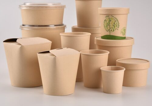 Disposable-custom-design-printed-cardboard-paper-food